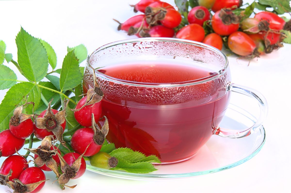 Image of rose hip tea