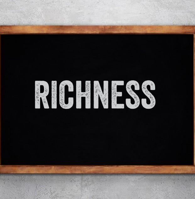 The word Richness on a chalkboard
