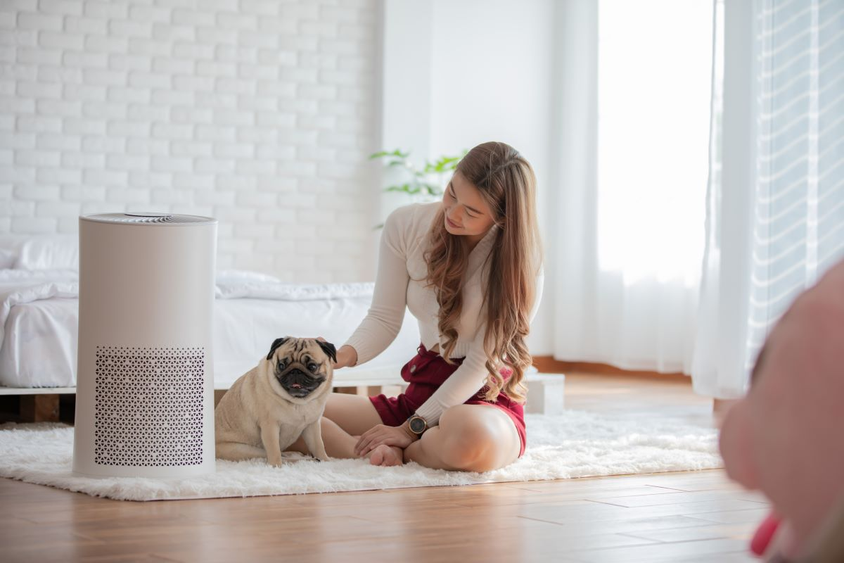 Image of a lady using air purifier
